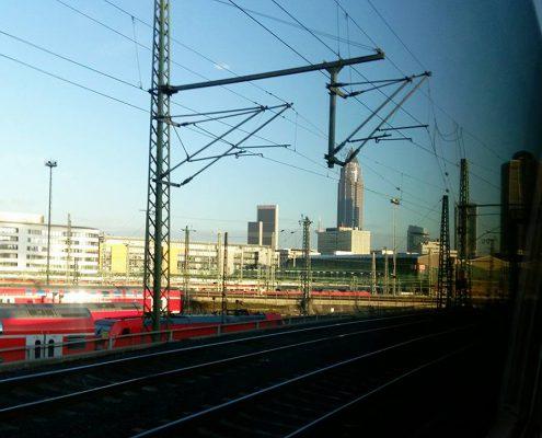 Ohne Moos nix los – Herbsttagung: 3. – 5. Dezember in Frankfurt a. M.